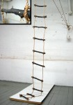Burnt Ladder